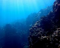 world-diving-net