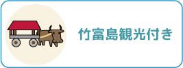 竹富島観光付き