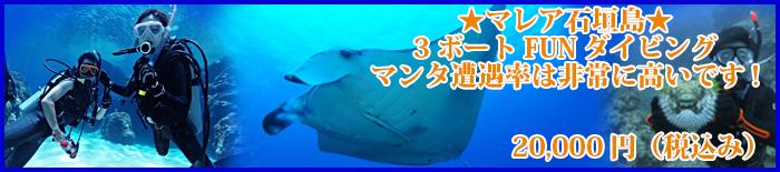 marea_ishigaki3新