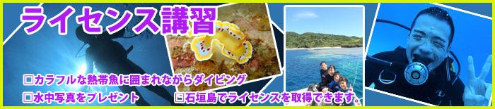 sunfish5