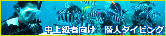 うるまダイビング3-1
