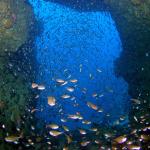 沖縄本島エリア39