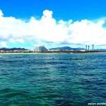 石垣島エリア19