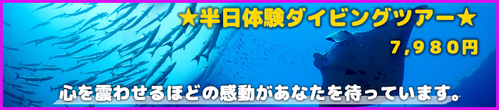 oceans5-2