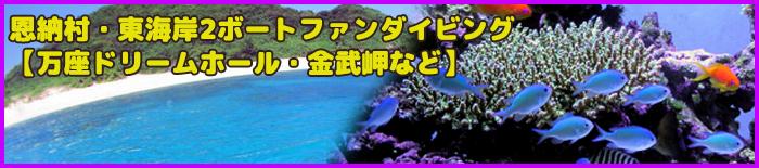 marea_okinawa5新