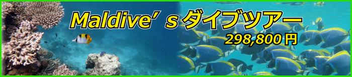 sevenseas6